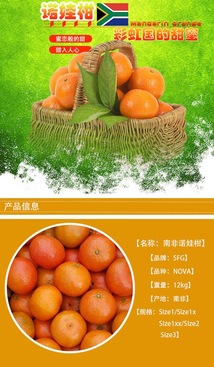 金豹鲜果进口水果批发